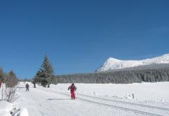 Gîte  - Extérieur - Station de ski des Estables