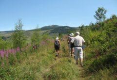 Gîte  - Extérieur - la mandra activité randonnée
